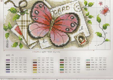 borbado borboleta quadro vintage 6