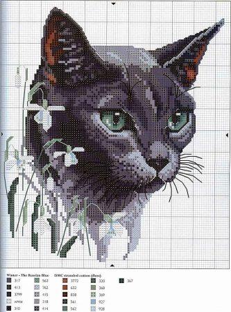 Coleção Quadro Rostos de Gatos com Flor BordadoPontoCruz 01