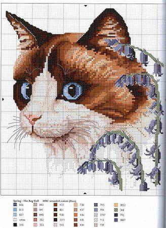 Coleção Quadro Rostos de Gatos com Flor BordadoPontoCruz 02