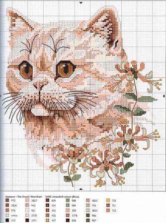 Coleção Quadro Rostos de Gatos com Flor BordadoPontoCruz 03