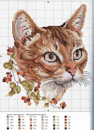 Coleção Quadro Rostos de Gatos com Flor BordadoPontoCruz 04